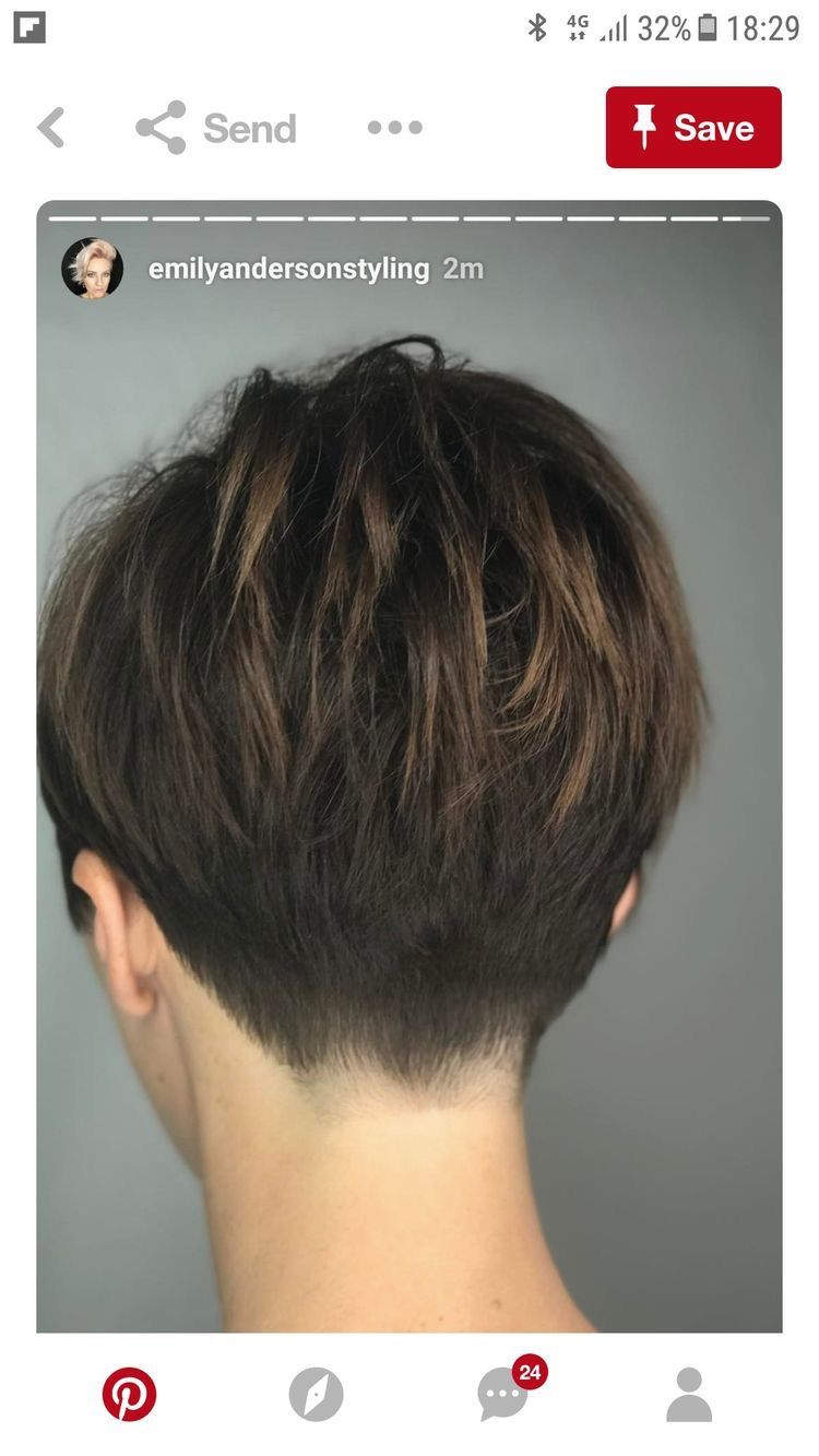 Pin by Suzanne Waholl on Hair   Short hair back, Haircut for thick ...
