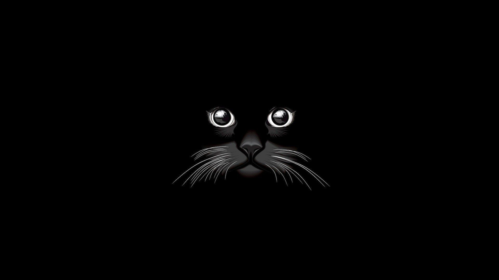 Artistic Vector Black Cat Minimalist 1080p Wallpaper Hdwallpaper Desktop Cat Vector Minimalist Wallpaper Artistic Wallpaper
