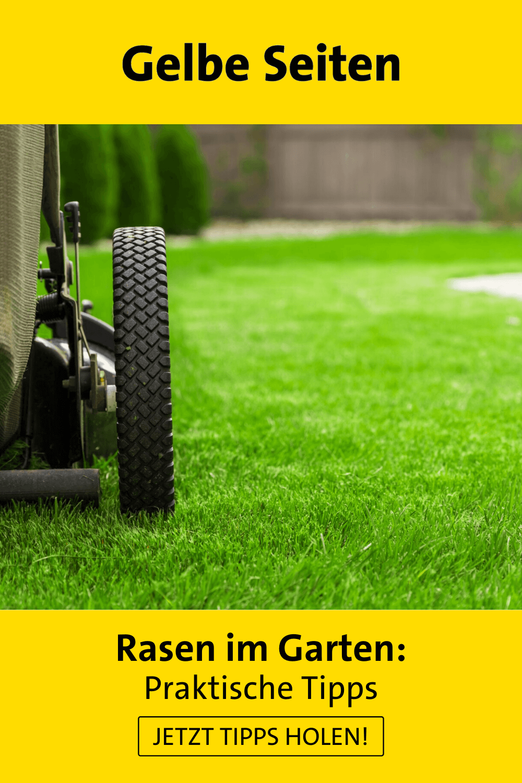 Garten Rasenkanten Ideen Rasenkanten Rasen Neu Anlegen Rasenpflege Im Fruhjahr Ras In 2020 Garden Decor Garten Decor