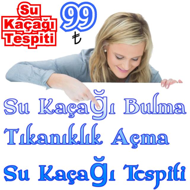Services http://www.elittesisat.net/su-kacagi-bulanlar/