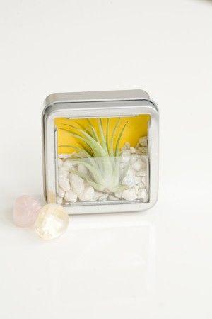 Diy Mini Zen Garden Favor Kits Zen Garden Miniature Zen 400 x 300