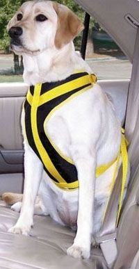 Dog Safety Vest Harness Easy To Use And Offers Excellent Overall
