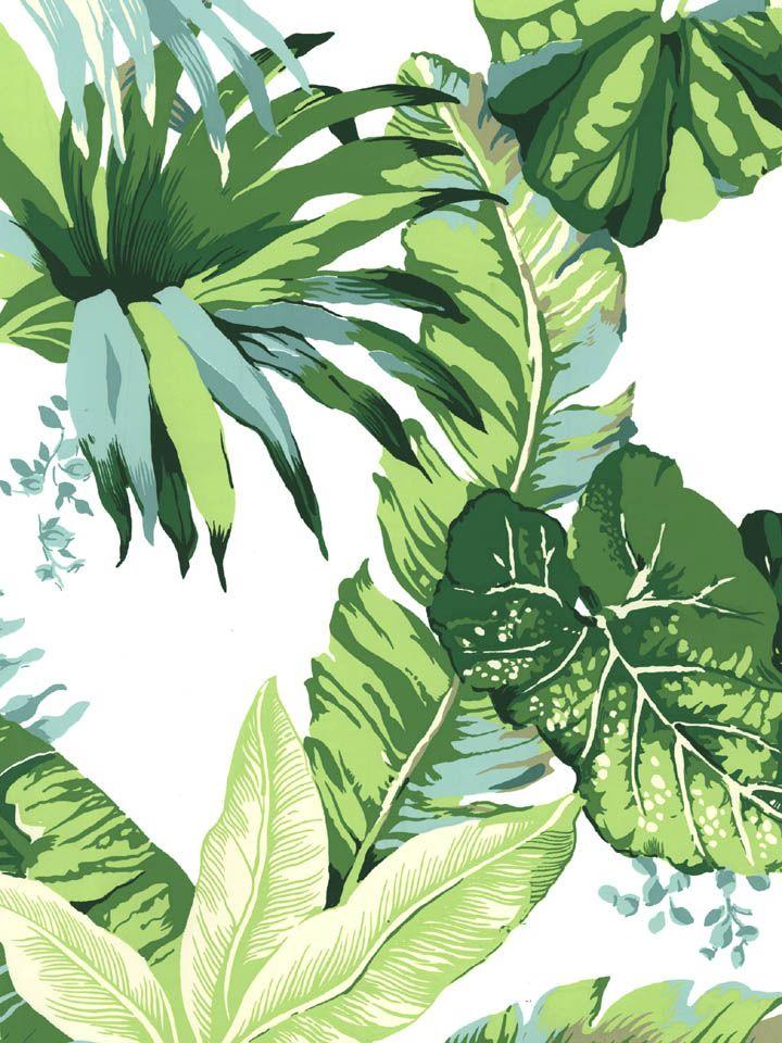 Hojas verdes ilustracion pinterest hojas verdes for Papel pintado hojas verdes