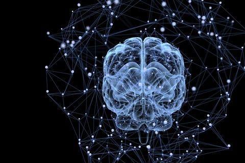 Omsorgssvikt og nevrobiologi: Øvelsen illustrerer at vi er programmert til å reagere følelsesmessig på å bli møtt med dårlig inntoning.