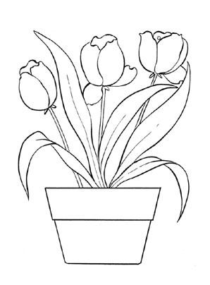 Ausmalbild Tulpen zum Ausdrucken und Ausmalen #