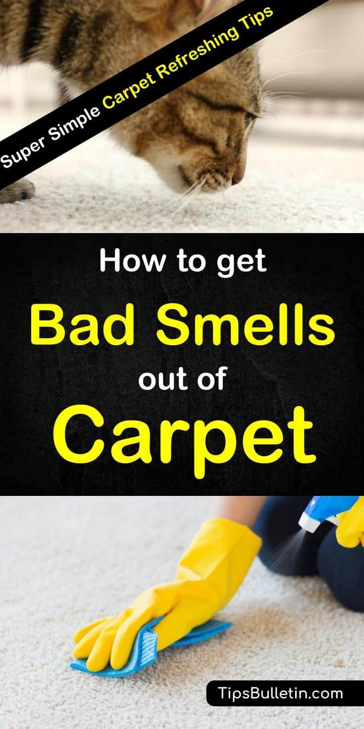 Vinegar To Remove Urine Smell From Carpet