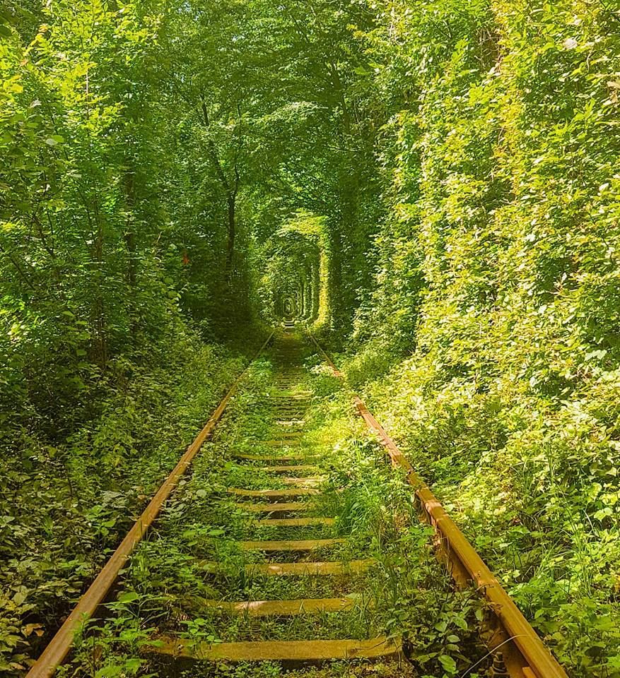 How To Get To The Love Tunnel In Ukraine Ultimate Guide Ukraine Trip Train Tracks