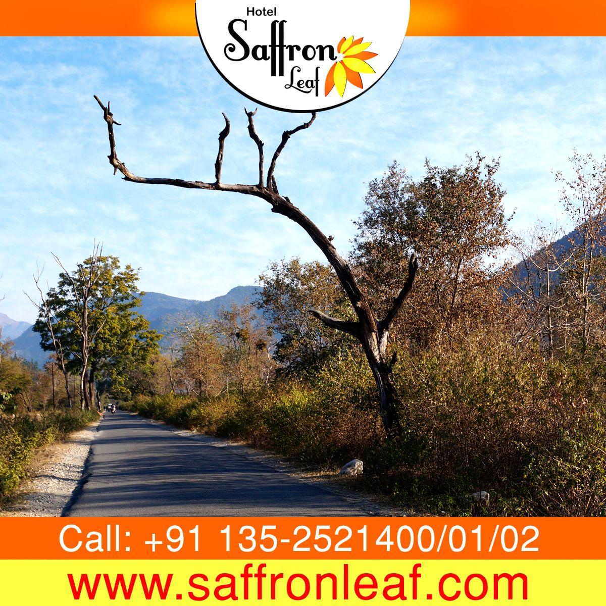Spend your lovish time in Hotel Saffron Leaf and visit the beauty of Dehradun. To know more about us visit www.saffronleaf.com