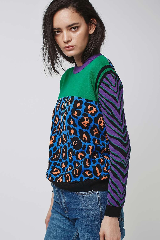 animal print colour block jumper | color blocking, jumper and topshop - Animal Pictures Print Color