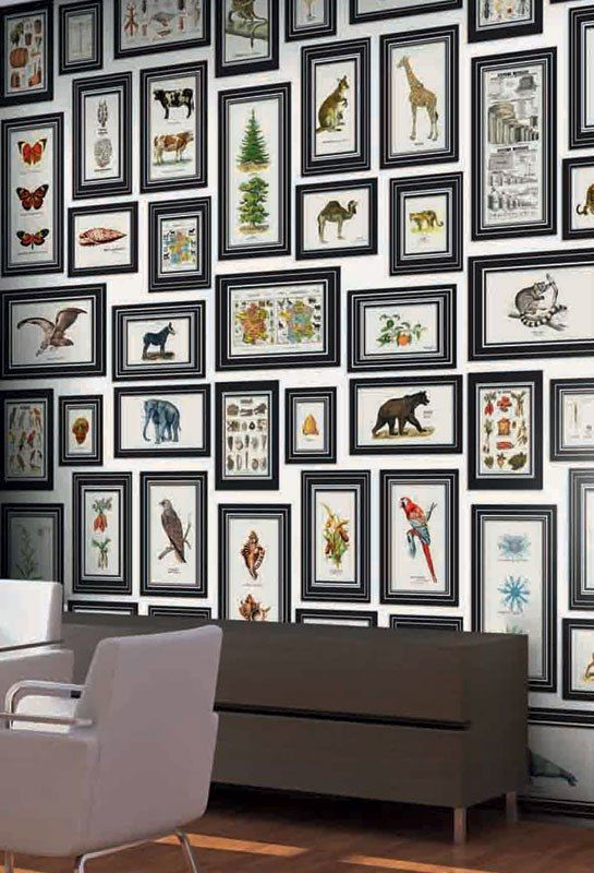 Deyrolle and neodko collaborate on a playful wallpaper collection