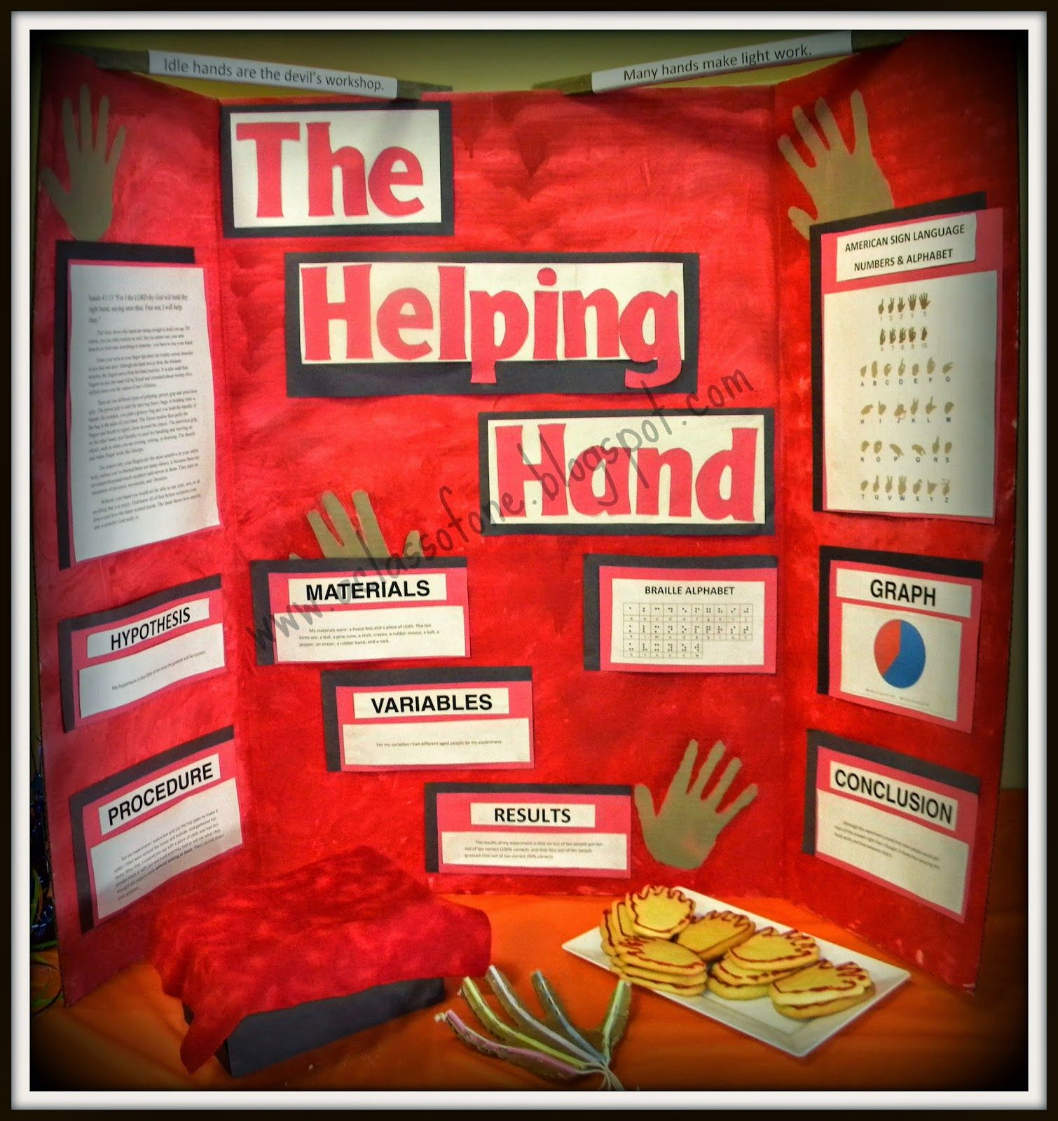 Science Fair Project: The Helping Hand | Human Anatomy | Pinterest ...