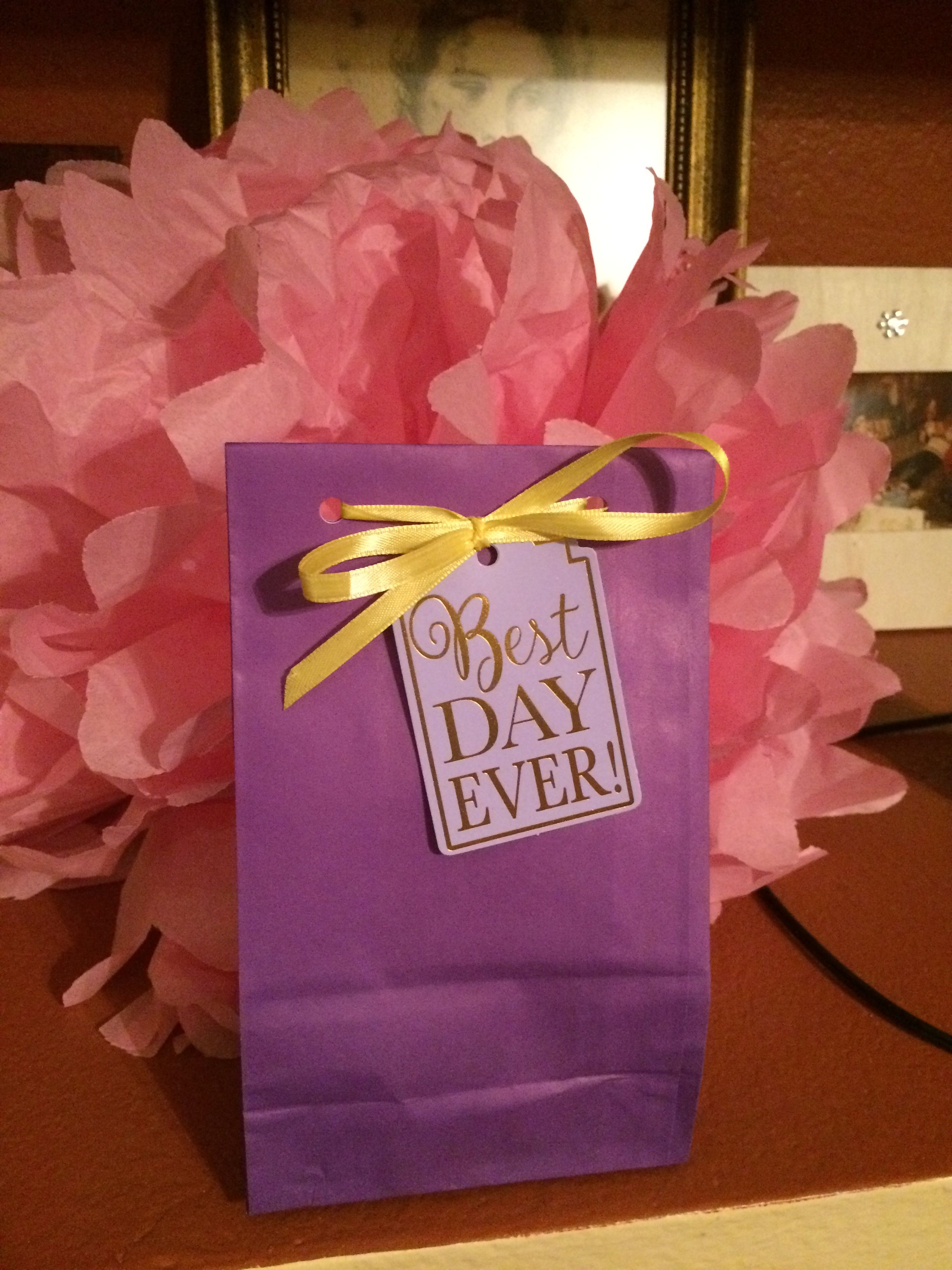 Goodie bag with a pink Lush bath bomb inside. | Emily sixteen ...