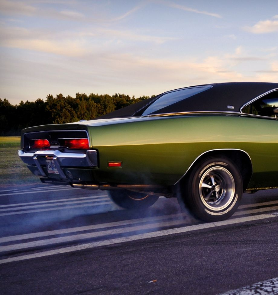F8 green 69 charger smokin the hides