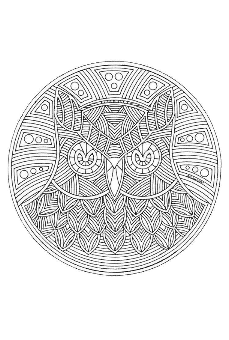 Herbst Mandalas Kinder Eule Uhu Geometrisch Zentangle Und Zeichnen
