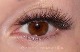 51b7d9045f0 shu uemura eyelashes smokey layers | Shu uemura false eyelashes ...