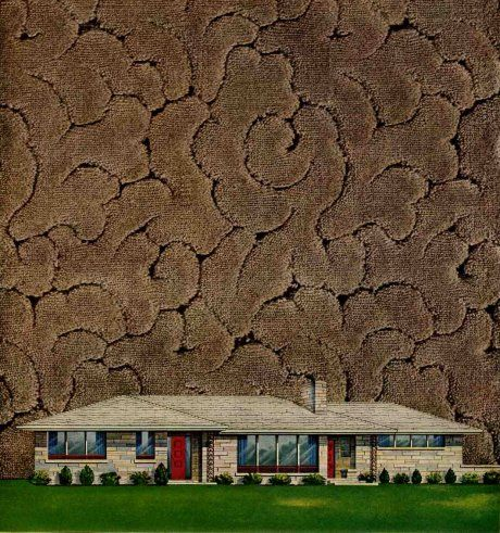 Yes You Can Have Wall To Wall Carpet In Your Retro Home Textured Carpet Retro Renovation Wall Carpet