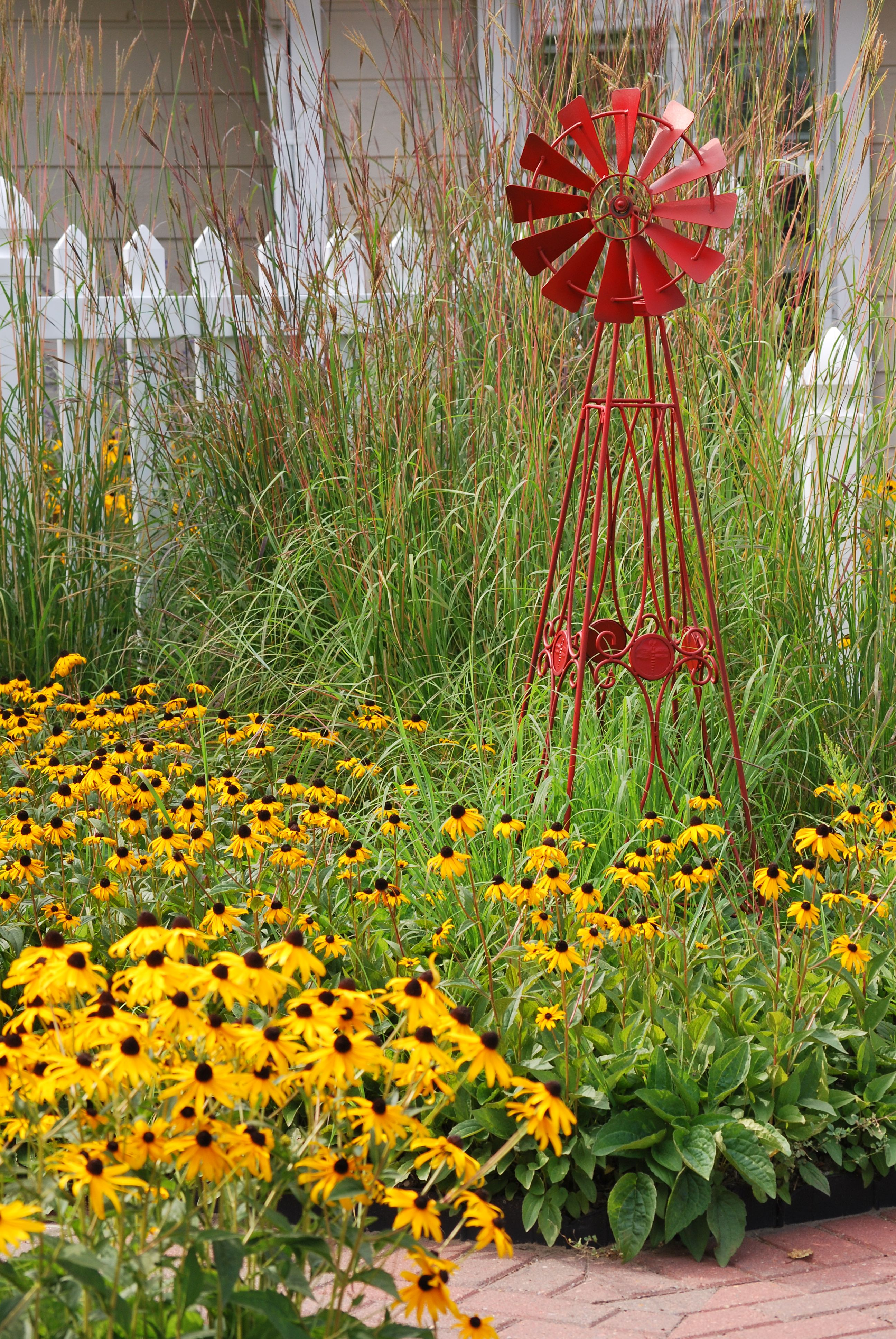 Black Eyed Susans, Red Metal Windmill And Ornamental Grass / So Prairie  Pretty!