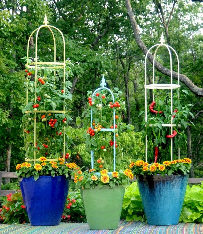 30 Amazing Ideas For Growing A Vegetable Garden In Your: 59+ Wondeful Summer Container Gardening Ideas Decorations