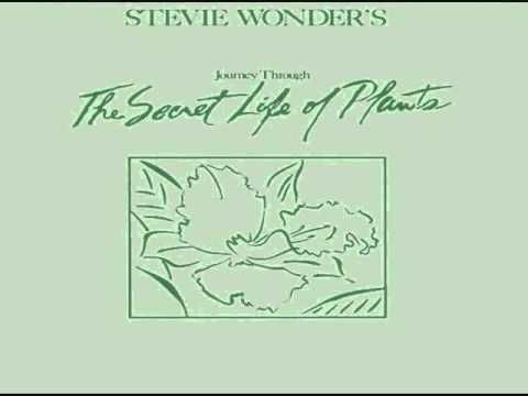 Stevie Wonder Secret Life of Plants Full LP 1979 - YouTube