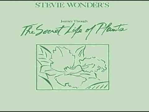 Stevie Wonder Secret Life of Plants Full LP 1979 - YouTube