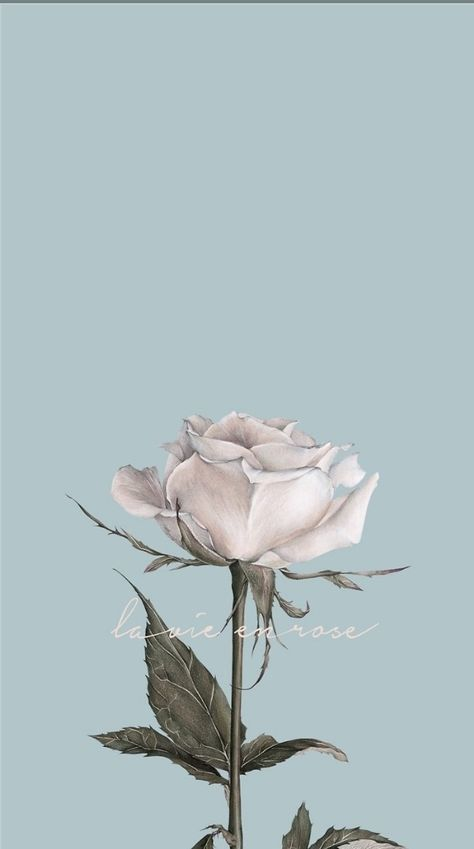 Flowers tumblr background iphone wallpaper beautiful 26 new Ideas