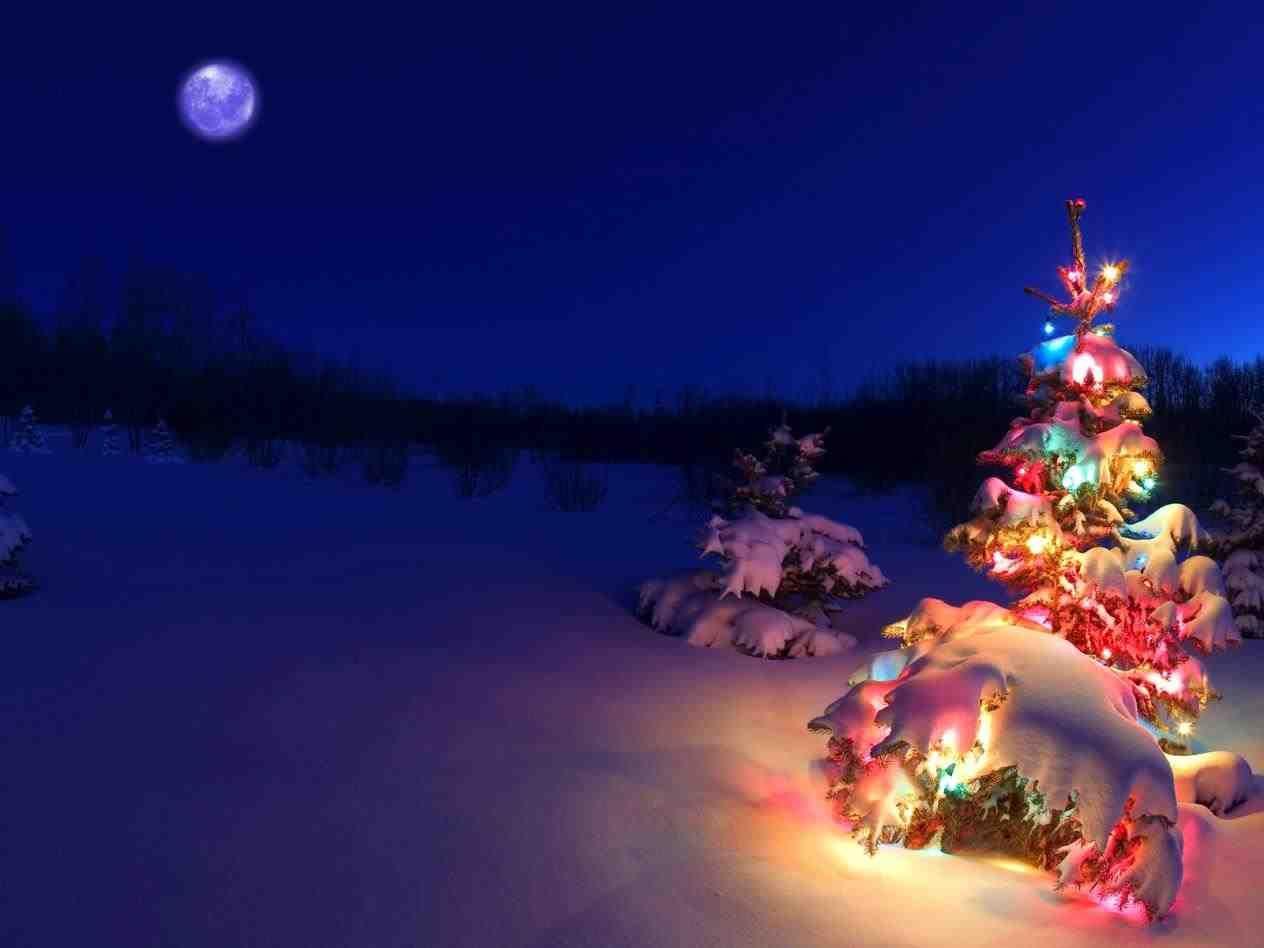 New post christmas lights tumblr snow trendingcheminee website