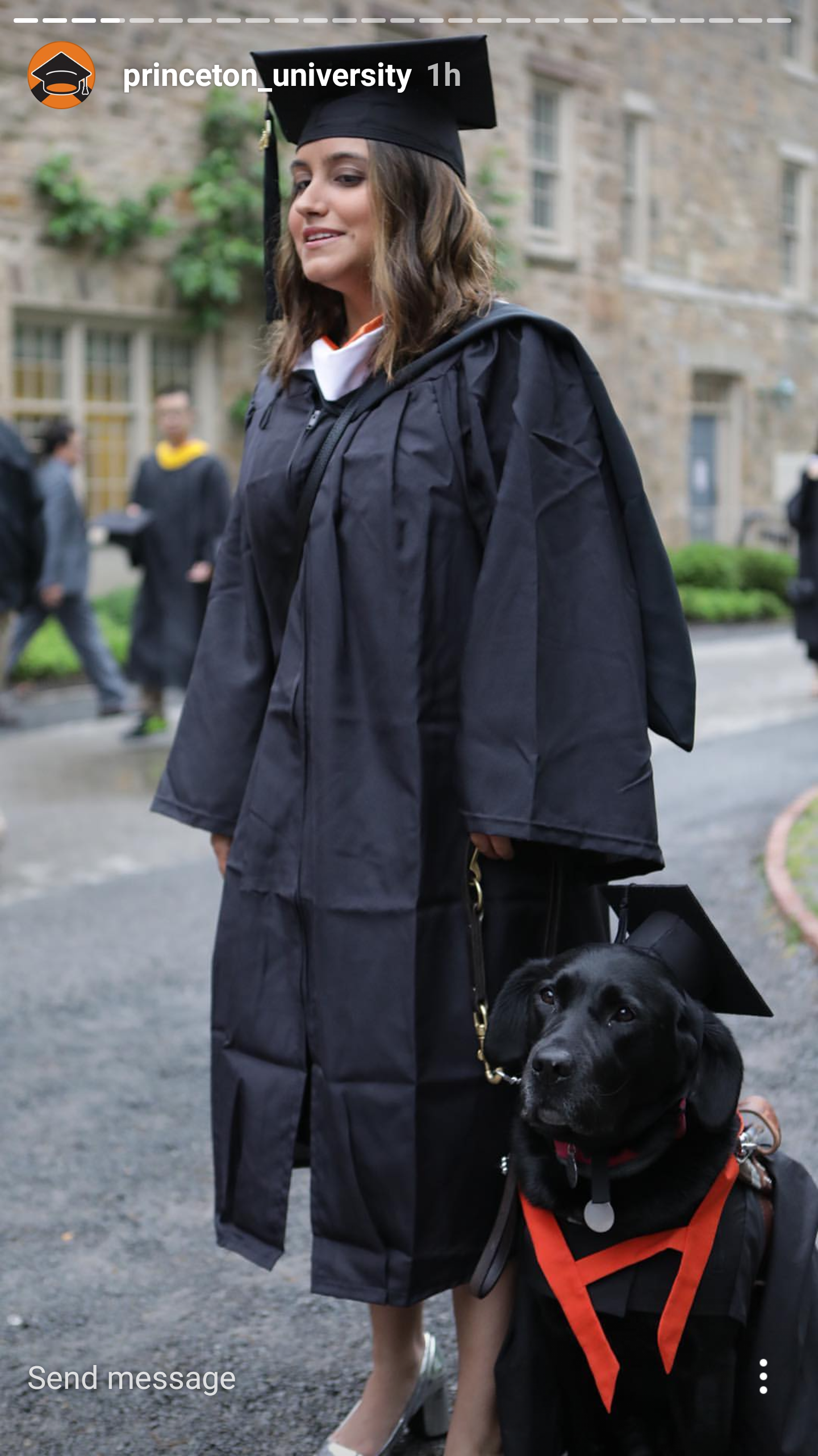 This service dog has a cap and gown at Princeton\'s Commencement ...