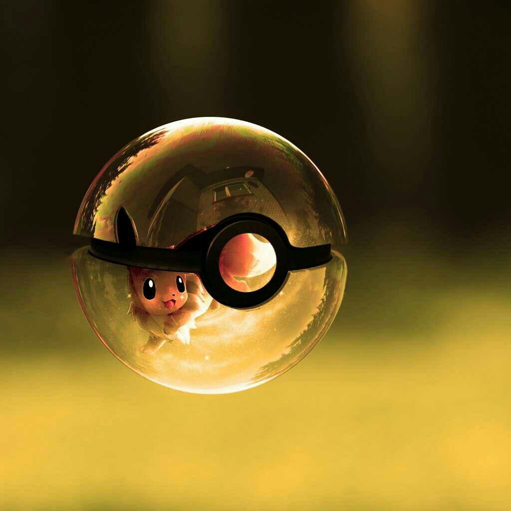 Pokeball evoli pokemon pok mon pinterest pokemon - Pokemon noir 2 evoli ...