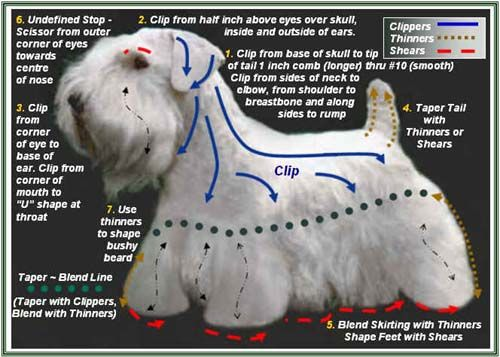 Dog Grooming Instructions Grooming Charts Grooming Pictures Dog Grooming Salons Dog Grooming Tips Dog Grooming