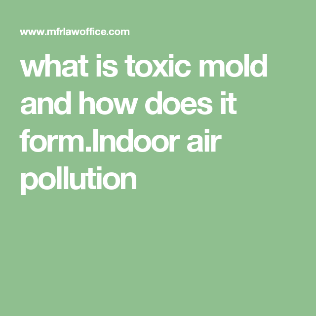 What Is Toxic Mold And How Does It FormIndoor Air Pollution