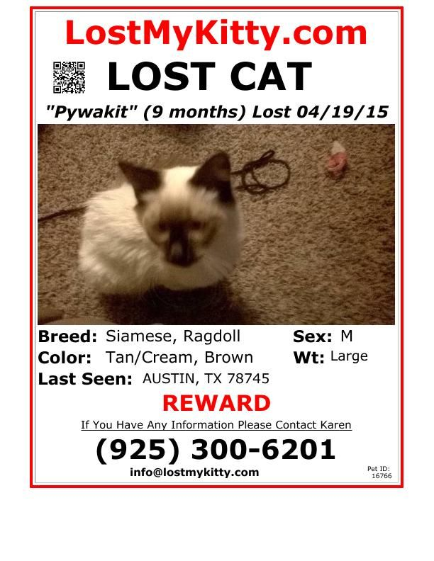 wwwlostmykitty/pet_images/pdf/faxing/16766pdf Lost