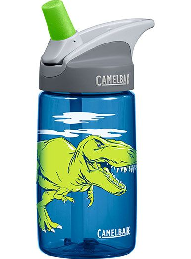 GREEN BOYS DINOSAUR 400Ml PLASTIC WATER SPORTS DRINKS LUNCH BOTTLE WITH STRAW