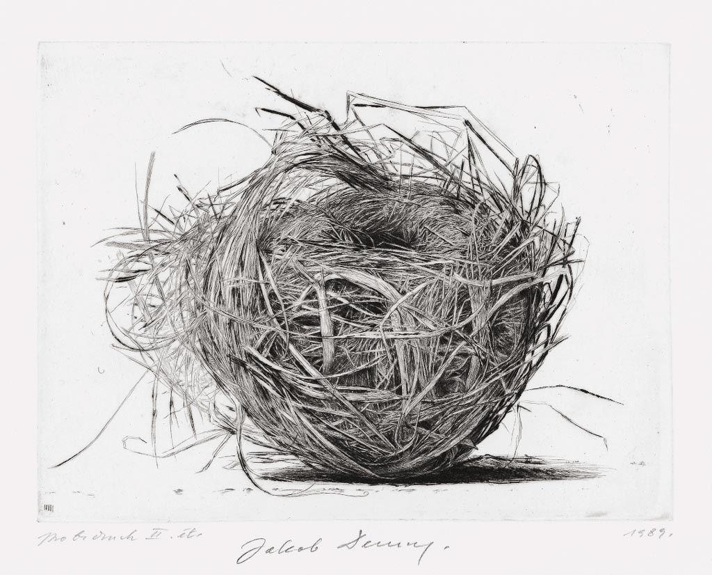 Line Drawing Nest : Jakob demus(austrian b ) birds nest Ⅱ diamond