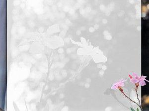 Unduh 4800 Koleksi Background Bunga Ppt HD Paling Keren