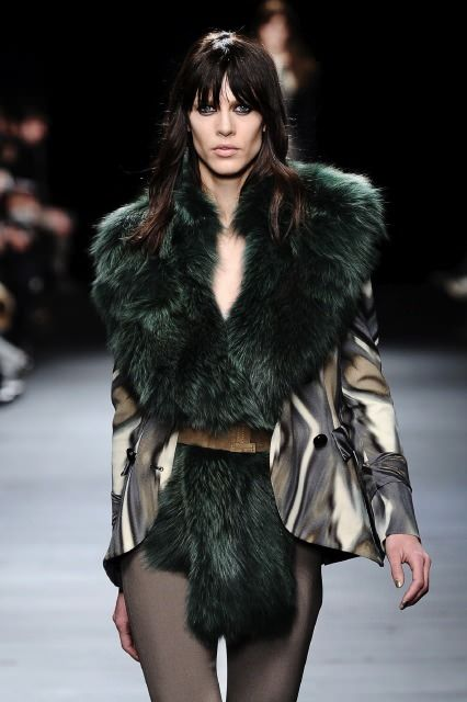 Iceberg - Fall 2012-Winter 2013