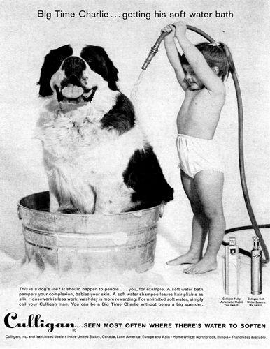 Vintage Culligan Water Softener Ad Too Cute Culligan Retro Ads Vintage Advertisements