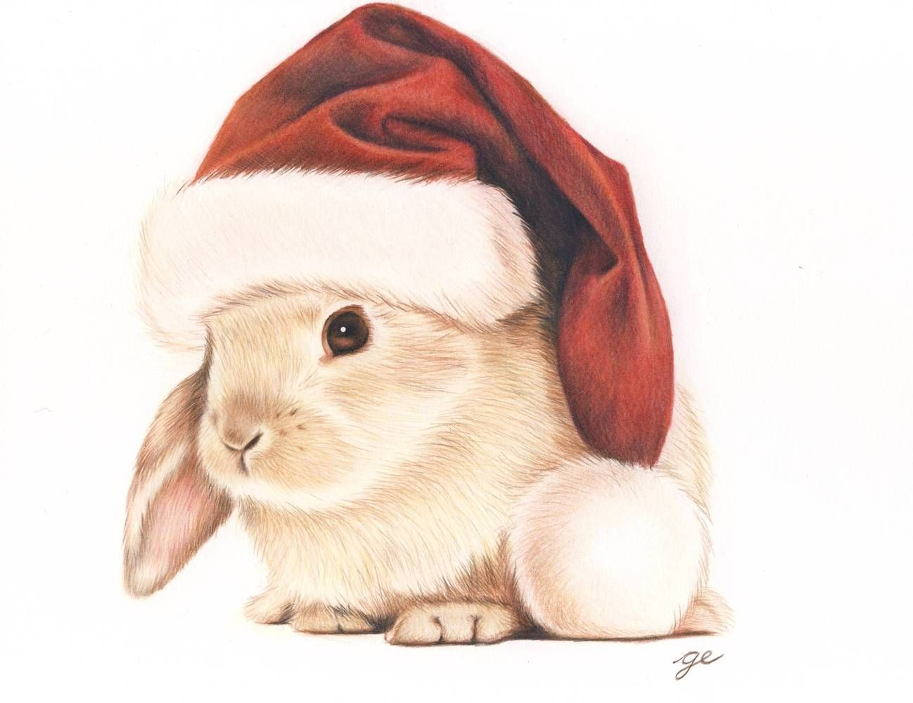 Lapin de no l christmas bunny reproduction gicl e d 39 un - Lapin dessin couleur ...