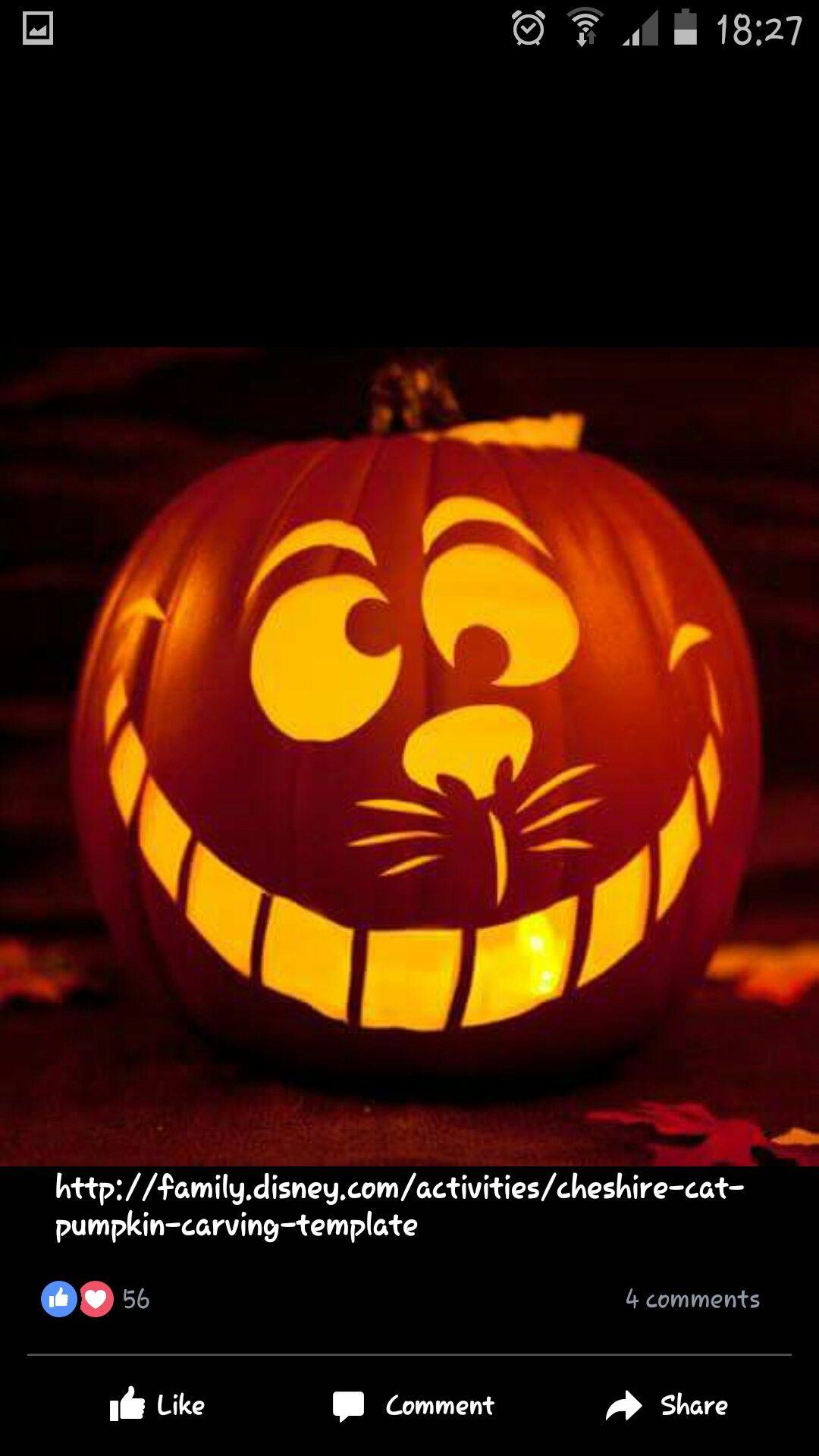 cheshire cat pumpkin k rbis schnitzen lustig katze. Black Bedroom Furniture Sets. Home Design Ideas