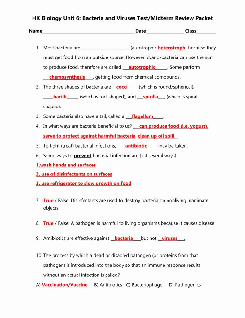 Virus And Bacteria Worksheet Answers - worksheet