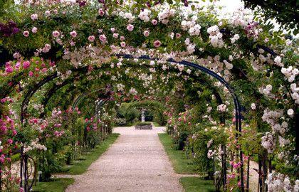 Roseraie du val de marne arche de roses paris chantal for Jardin botanique paris