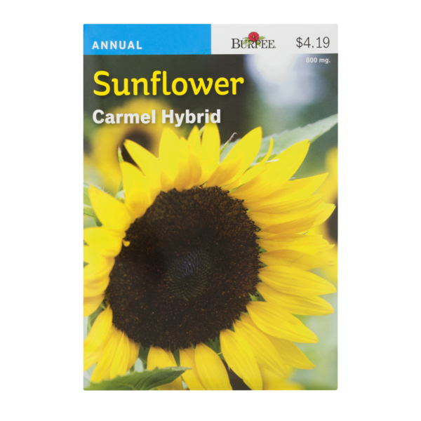 Buy Burpee Sunflower Carmel Hybrid 800 Mg From Safeway Online And Have It Delivered To Your Door In 1 Hour Your First Deliver Sunflower Garden Seeds Burpees