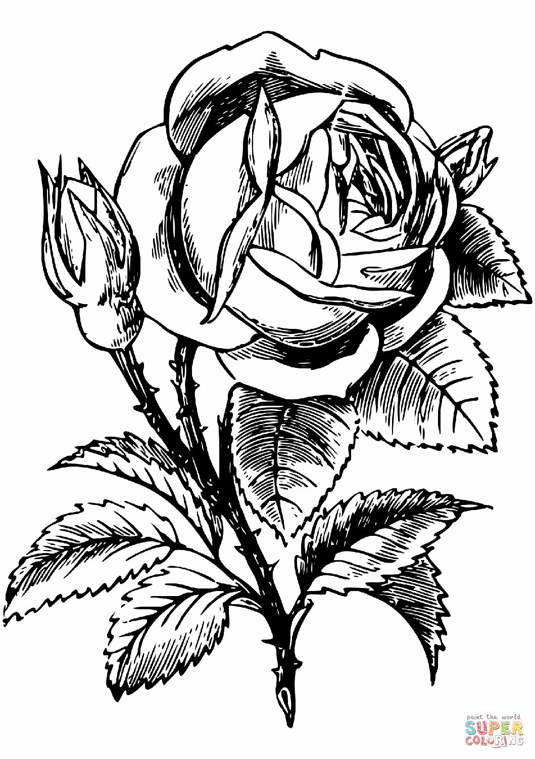 Roses Coloring Books New Rose Coloring Page Rose Coloring Pages Flower Coloring Pages Coloring Pages To Print