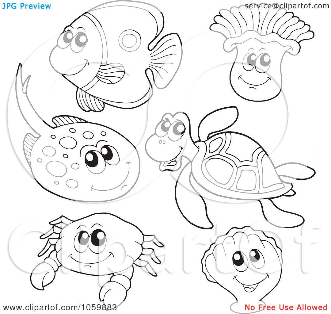 Ocean Animals Blank Small