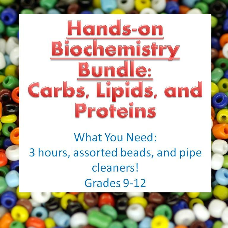 biochemistry activity bundle four macromolecules for high  biochemistry activity bundle four macromolecules for high school biology