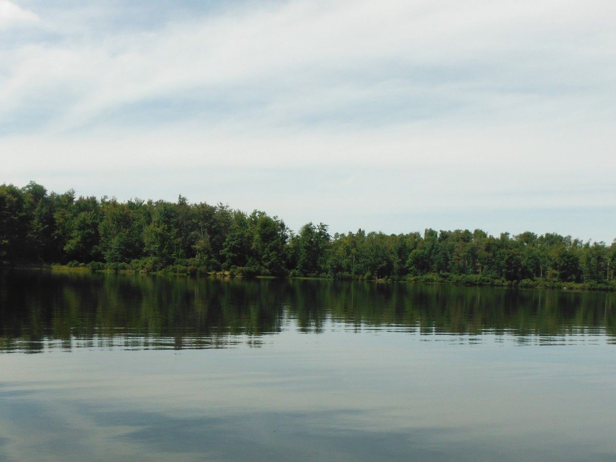 Lake Jean, in Rickett's Glen State Park is a wonderful place to swim or go for a paddle in a canoe or kayak.