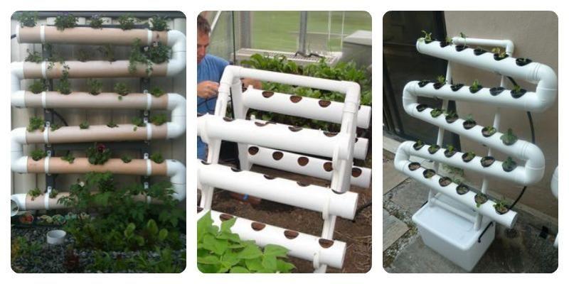 Diferentes formas de sembrar con tubos de pvc sembrar es for Plantaciones verticales