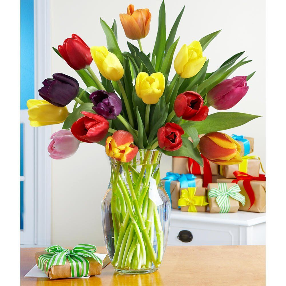 Make A Wish Multi Colored Tulips With Free Glass Vase Flowers Price 24 99 Tulips Flowers Tulips Glass Vase