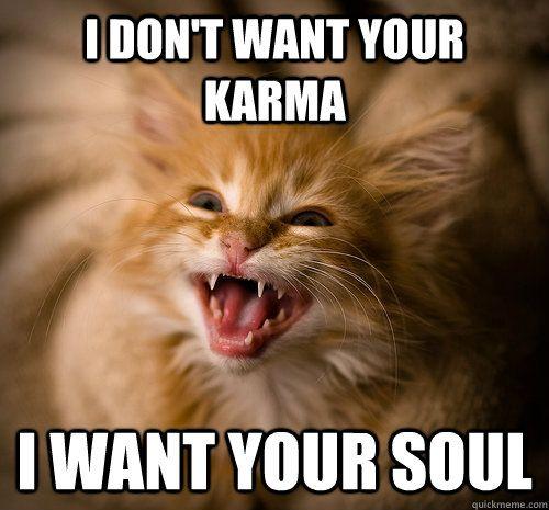 Evil Kitten Memes Quickmeme Evil Cat Kittens Cats