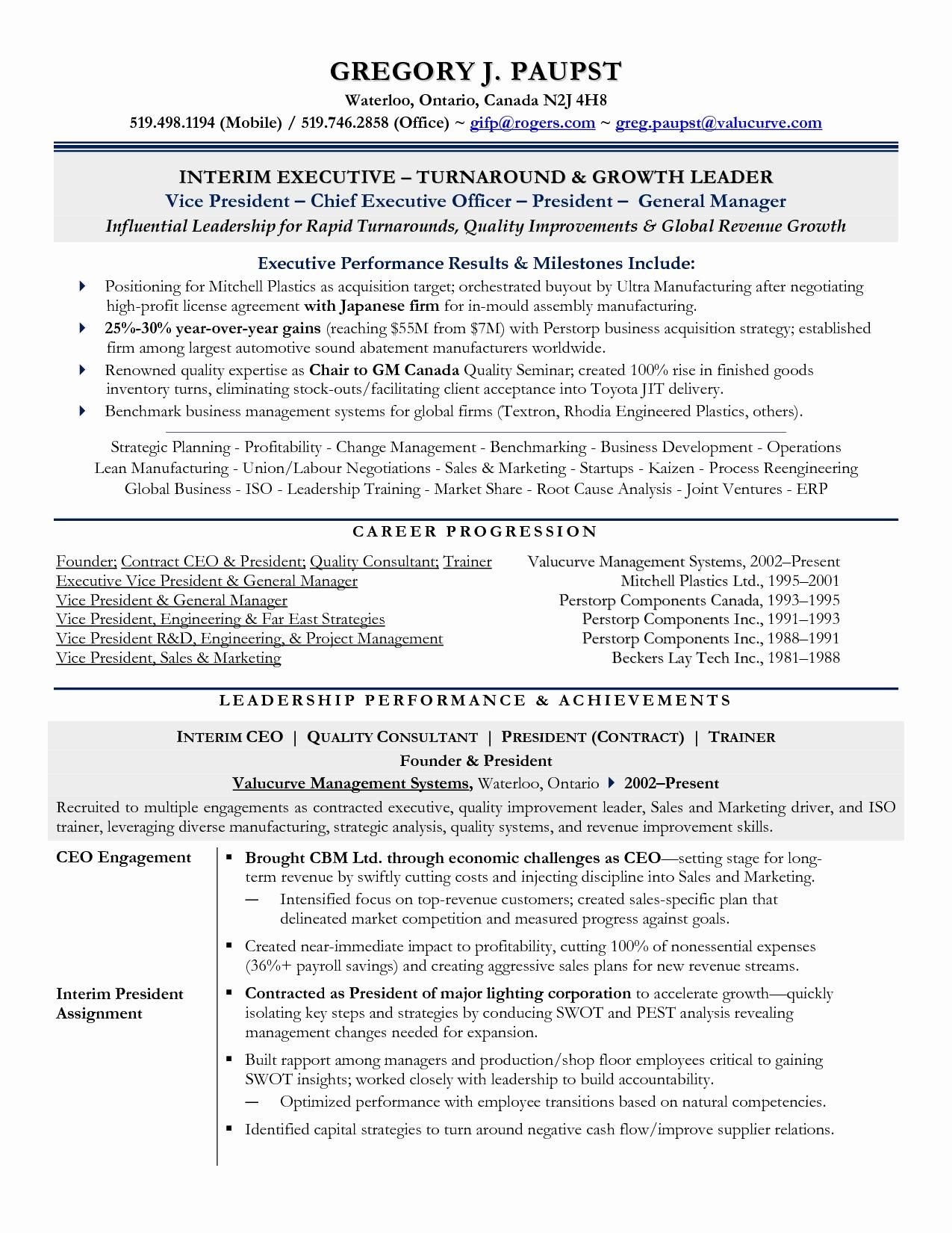 Business Operations Executive Resume Examples Executive Resume Good Resume Examples