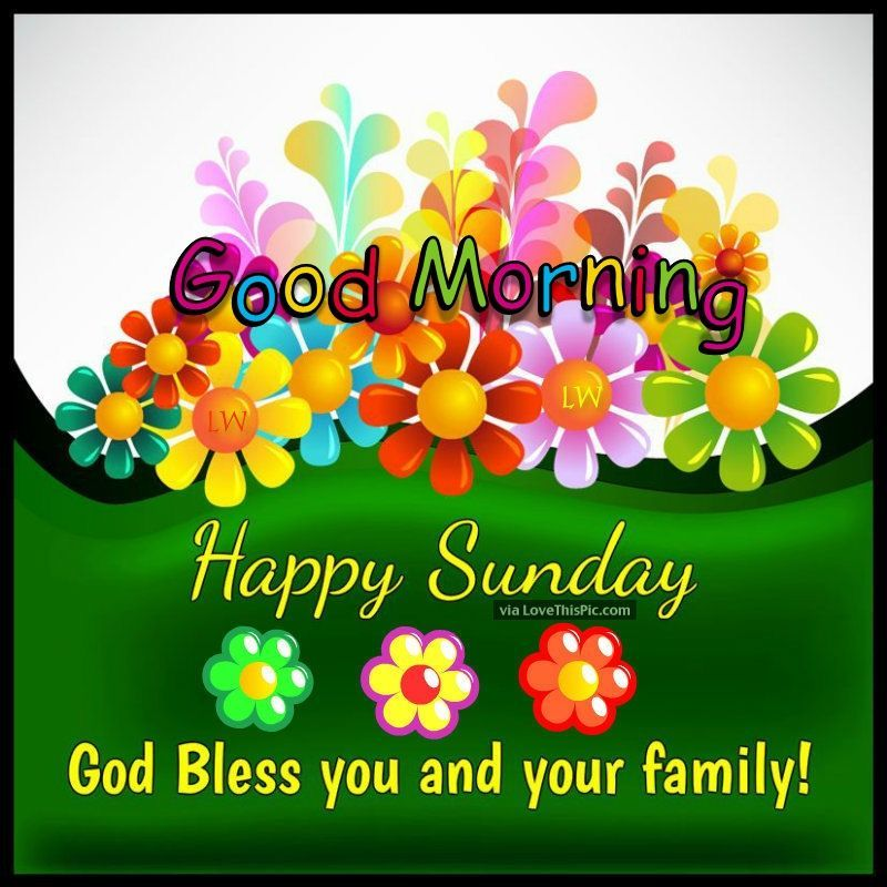 Good Morning Happy Sunday God Bless You And Your Family Good